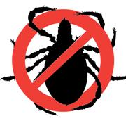 Уничтожение тараканов, клопов Львов